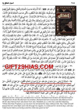 Kafi_Abu Talib Shemale